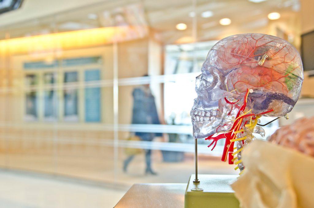 Hospital with Plastic Cranium